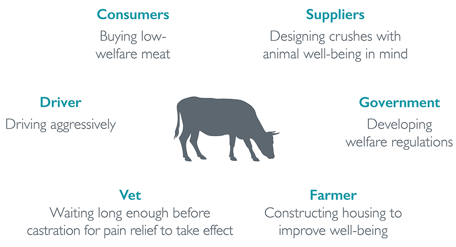 Example behaviours that affect farm animal well-being